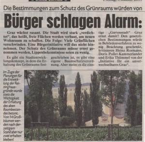 Kronenzeitung 090115-1bearb.
